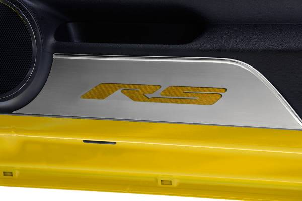 American Car Craft - ACC Door Panel Insert - 101018-SBLK
