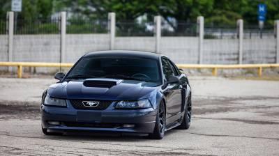 DOMESTIC - FORD  - Mustang SN95 1994-2004