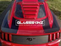 Glassskinz