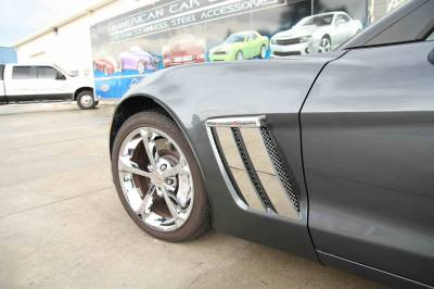 ACC Fender Covering - 42084