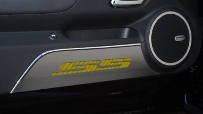 Modern Muscle Car Steel - Chevrolet Camaro - American Car Craft - ACC Door Panel Insert - 101016-BBLK
