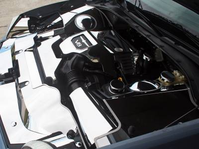 Domestic Auto Steel - Thunderbird Accessories - American Car Craft - ACC Fender Covering - 503002-B