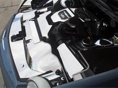 Domestic Auto Steel - Thunderbird Accessories - American Car Craft - ACC Engine Dress Up Kit - 503003-B