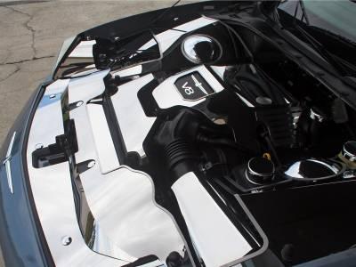 Domestic Auto Steel - Thunderbird Accessories - American Car Craft - ACC Engine Air Box Cover - 503004-P